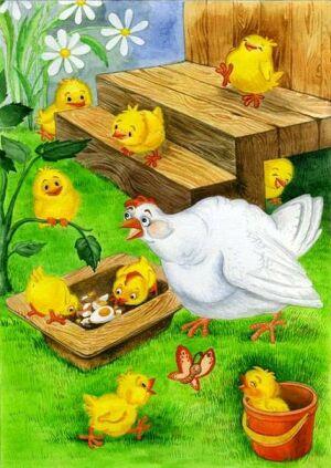 курица с цыплятами картинка для детей